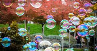 Seifenblasen für die Hochzeit